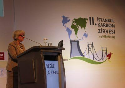II. Istanbul Carbon Summit 2015 1 (14)