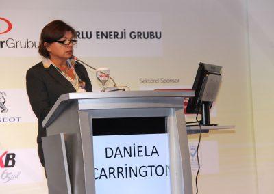 II. Istanbul Carbon Summit 2015 1 (16)