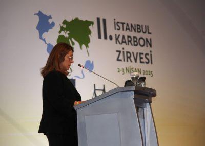 II. Istanbul Carbon Summit 2015 1 (9)
