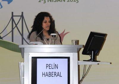 II. Istanbul Carbon Summit 2015 10 (3)