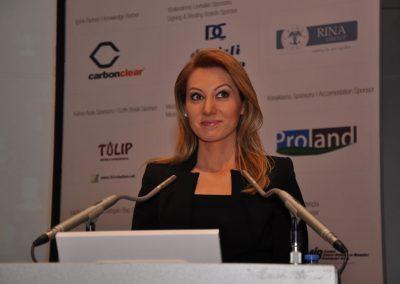 Istanbul Karbon Zirvesi 2014 (4)