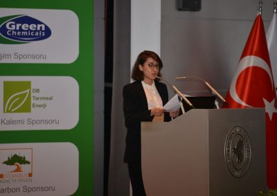 IV. Istanbul Carbon Summit (29)