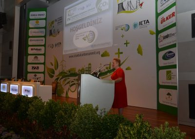 IV. Istanbul Carbon Summit (6)