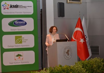 IV. Istanbul Carbon Summit (9)